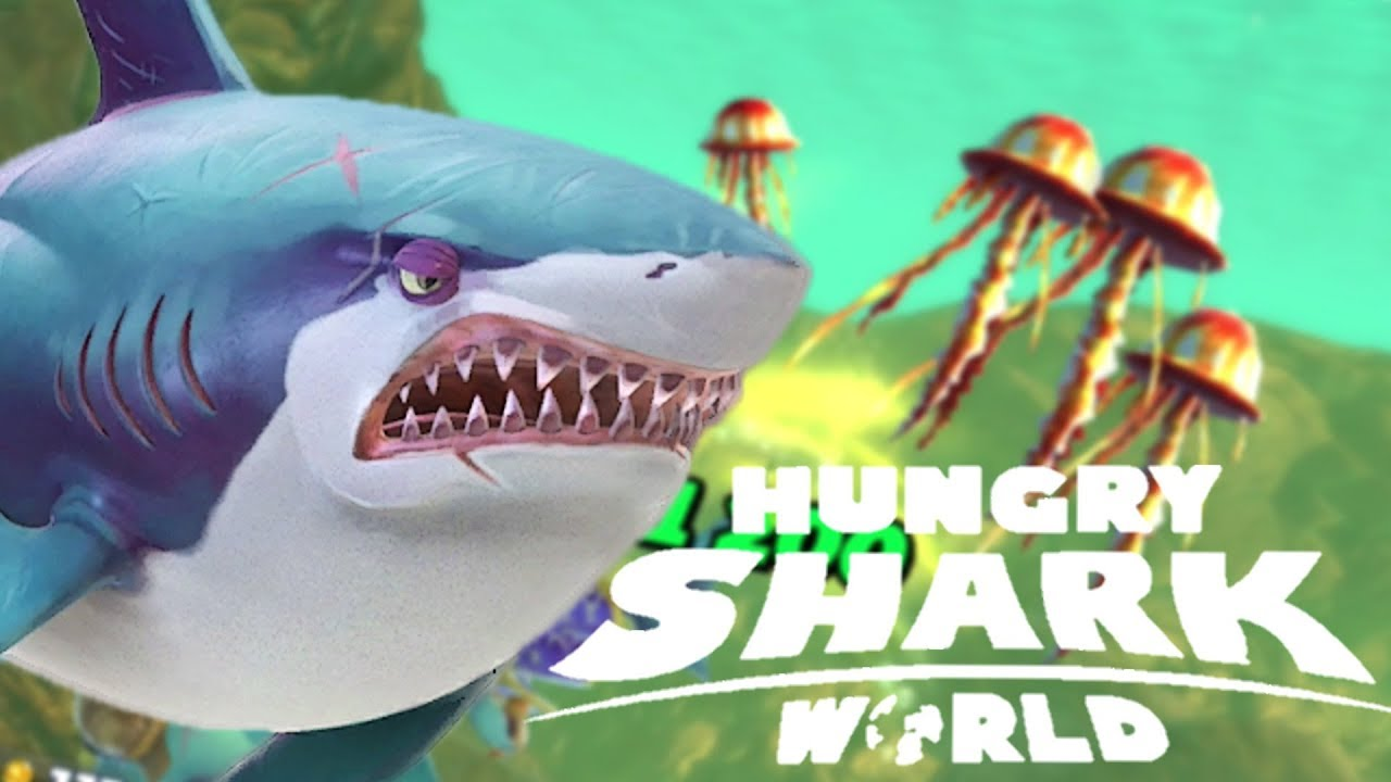 comment gagner beaucoup dargent requin hangri